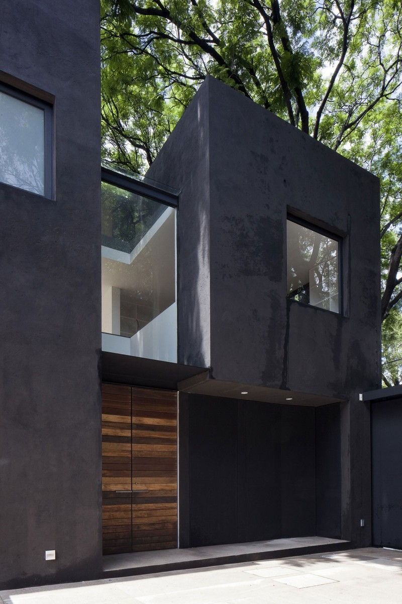 Dramatic black painted exterior walls balances the - Exterior wood paint black ...