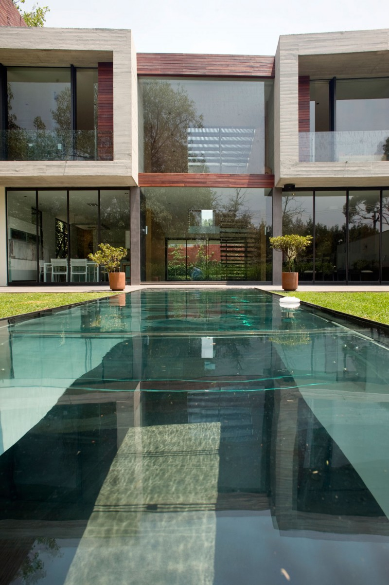 Extraordinary Casa V Residence with Large Rectangular Swimming Pool Transparent Glass Wall Pretty Ornamental Plants