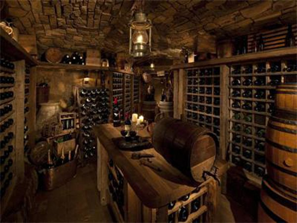 Incredible manor design with luxurious atmosphere for House wine cellar