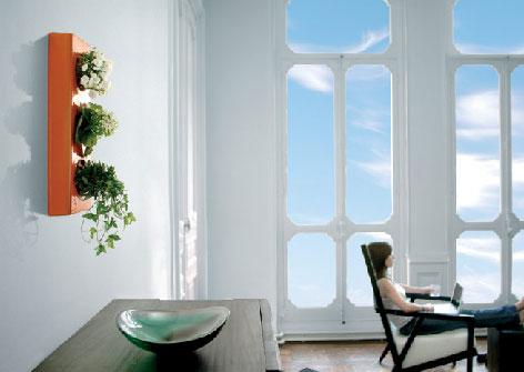 Refreshing Indoor Plants Decoration For Stylish Interior Decoration