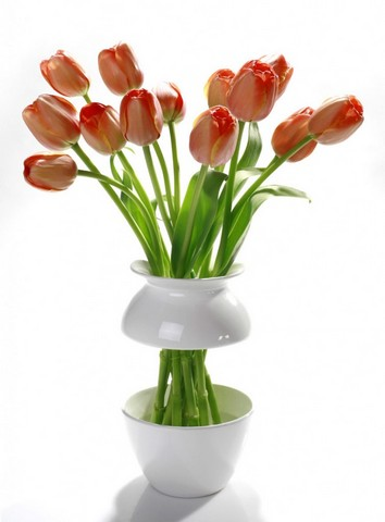Superior Creative Flower Vase To Adorn Every House Design