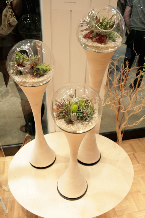 Refreshing Indoor Plants Decoration For Stylish Interior