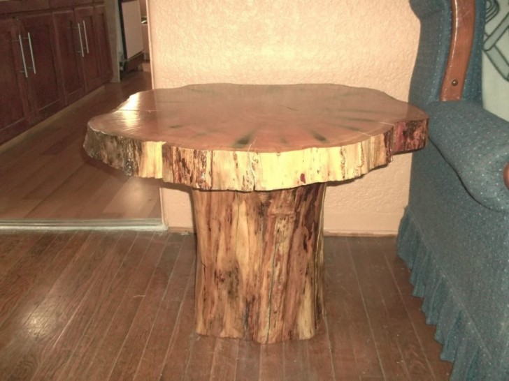 Assorted Tree Trunk Table